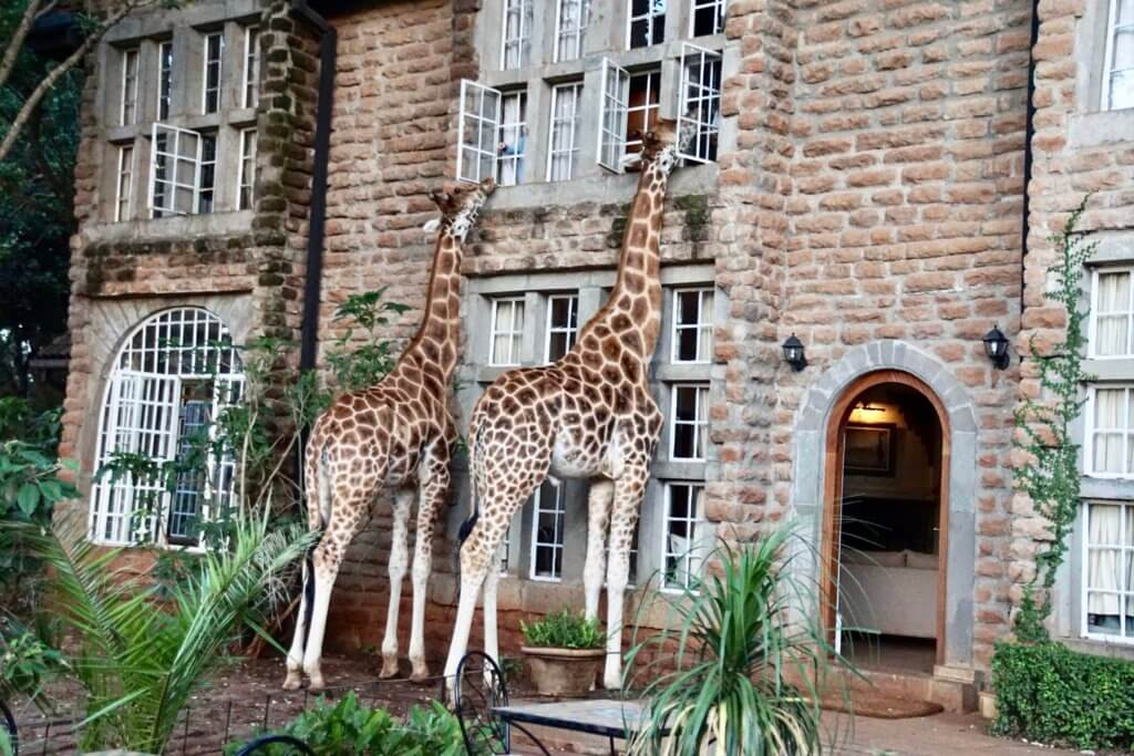 Giraffe Manor in Kenya